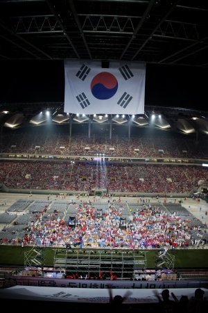 cheering crowd: Cheering crowd at World Cup Stadium in South Korea