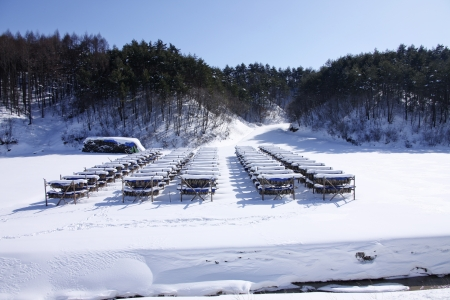 Beautiful winter landscape in south korea Daegwallyeong photo