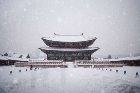 Palace in south korea, Gyeongbokgung