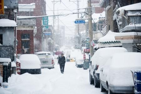 snowy landscape in south korea