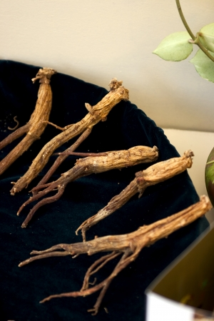 Traditional culture in south Korea,Medicinal red ginseng photo