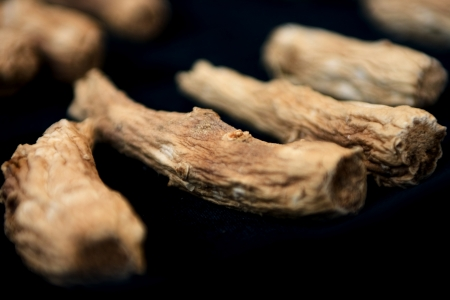 Traditional Medicine in south korea,Red Ginseng photo