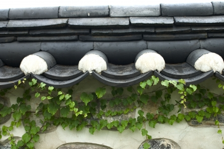 roofed house: Traditional houses in south korea,wall
