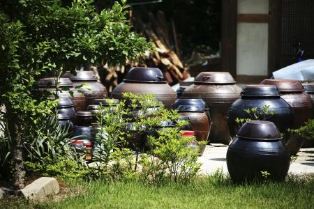 Traditional houses in south korea,jangdokdae