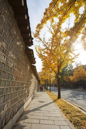 gyeongbokgung: Gyeongbokgung Palace in South Korea