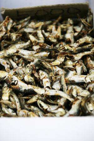 anchovy: Food in South Korea,Anchovy