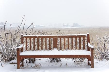 Beautiful winter landscape ecology park in south\ korea,SORE\