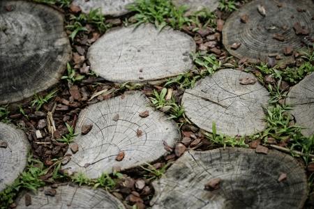 wood floor: Wood floor