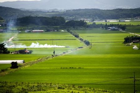 fumigador: Paisaje rural en Corea del Sur Foto de archivo