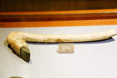 neolithic: Restos neol�ticos en Corea del Sur