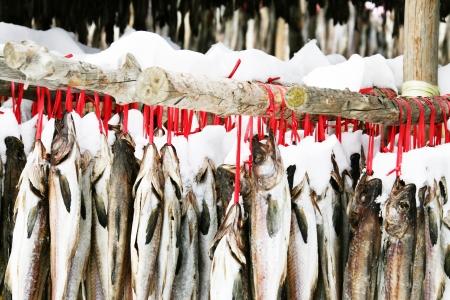 Fish drying in the rural landscape Korea, hwangtae deokjang