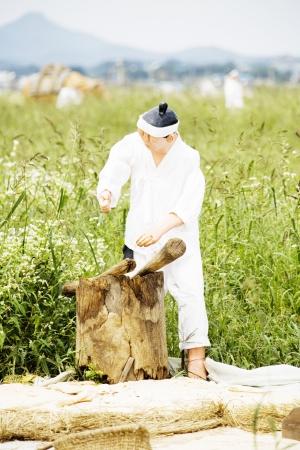 Farmers in south korea model doll photo