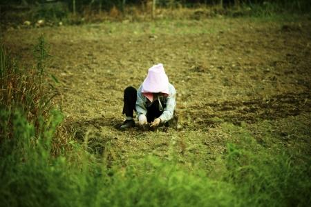 Farmers in the rural landscape Korea