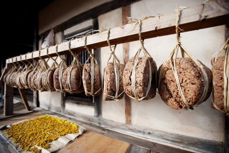 fermented: fermented soybean lump  Meju