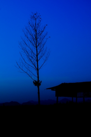 Silhouette of house and tree with moutain background photo