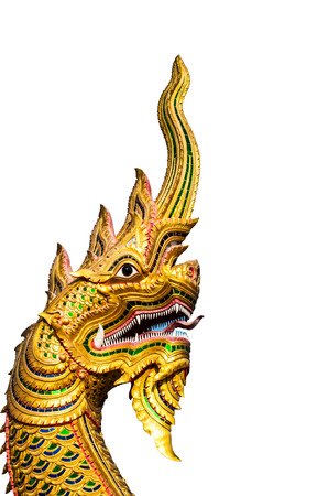 naga china: Dragon head with white background