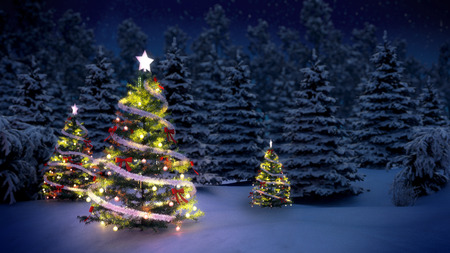 shiny Christmas tree before snow covered forest at night Archivio Fotografico