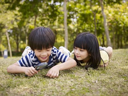 pequeño muchacho asiático y muchacha que usa la lupa para estudiar la hierba y las hojas en un parque.