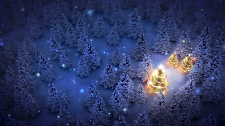 lightened christmas trees surrounded by snow-covered pine trees at night.