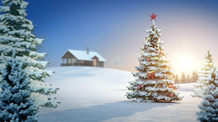 the trees covered with snow: computer generated background image with christmas theme.