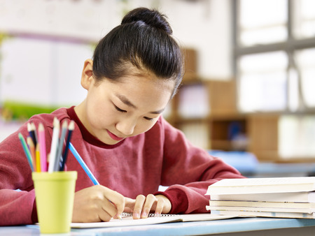 asian primary school student studying or doing homework in classroom.