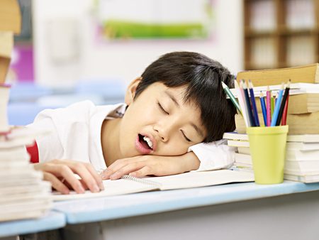 tired and exhausted asian primary school student falling asleep while studying Stockfoto