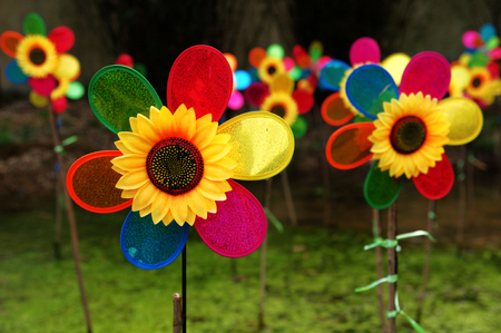 Colour pinwheels in a park Stock Photo