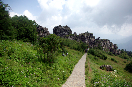 hubei province: View of Shennongjia forest zone,Hubei province,China