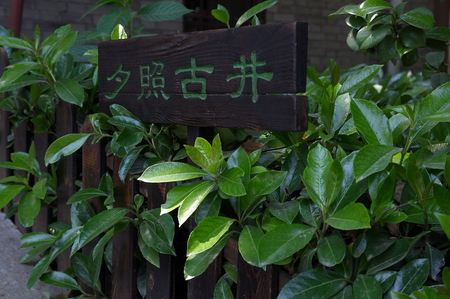 old wooden fence in garden with nameplate photo