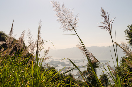hubei province: xiandao Lake scenery,Hubei Province