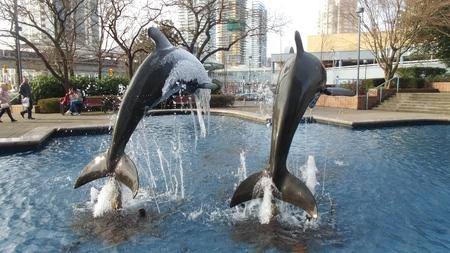 dolphin statue in fountain in winter