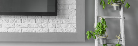 creatively: Close up of edge of tv and creatively renewed ladder with basil, panorama