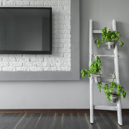 changed: Basil on old wooden ladder changed to flower stand, next to big tv in grey room Stock Photo