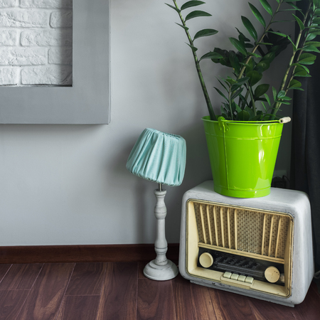 renewed: Stylish and vintage decorations like old radio, renewed lamp and green houseplant