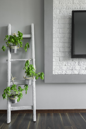 renewed: Picture of a white DIY flower stand made from wooden ladder