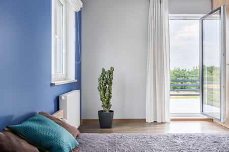 large doors: Spacious bedroom with large bed, blue wall, open balcony doors, cactus in pot standing on the floor