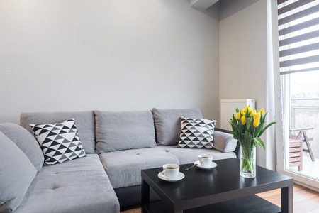 living room window: Light living room with window, coffee table and large sofa