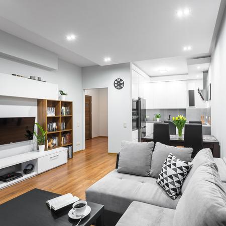 Lumineux et spacieux appartement dans un nouveau style avec un grand canapé, salle à manger ensemble et cuisine ouverte
