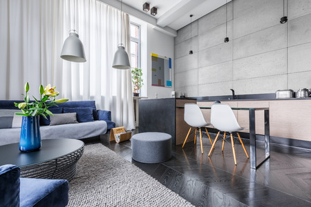 Modern apartment with kitchen and living room combined Banque d'images