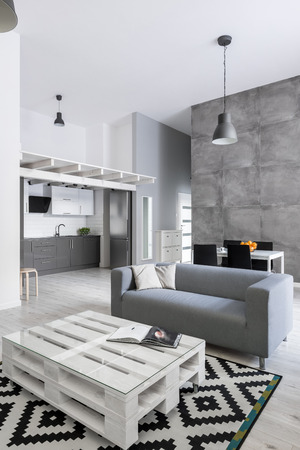 Modern living room with gray sofa, pallet table and pattern carpet Standard-Bild
