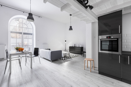 Modern apartment in industrial style with kitchen and open living room