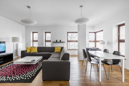 식사 및 거실이 결합 된 현대적인 아파트입니다. 스톡 콘텐츠 - 81159030