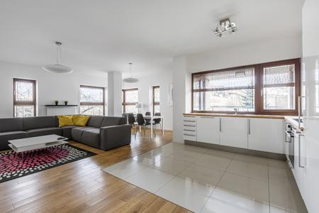 Modernes Apartment Mit Offenem Wohnzimmer Und Küchenzeile ...