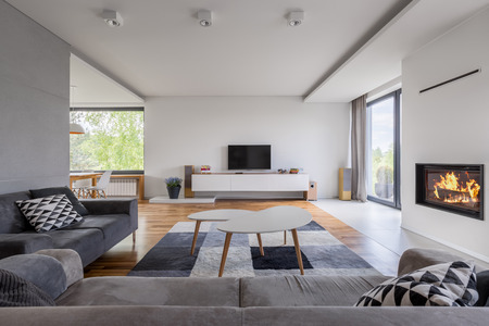 Gray and white, family living room with fireplace, tv and sofa Archivio Fotografico