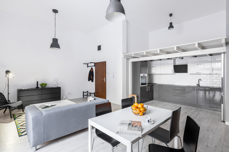 Open space loft apartment with living room, kitchen and mezzanine
