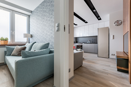 Modern apartment with contemporary sofa and bright, spacious kitchen 写真素材