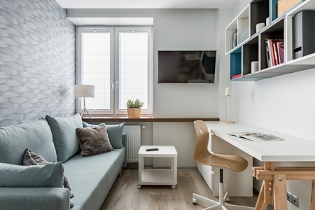 Modern home office with desk, sofa and tv