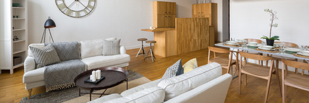 Panorama of multifunctional studio flat with leisure area, dining area and kitchenette Archivio Fotografico