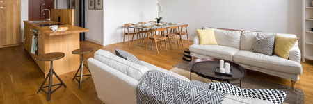 Panorama of stylish studio flat with two sofas and kitchenette Archivio Fotografico