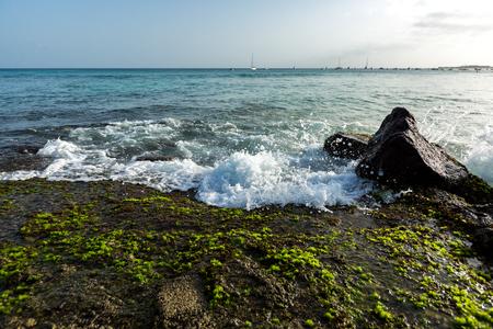 Ocean waves breaking on stone shore with green seaweed